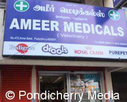 Ameer Medicals